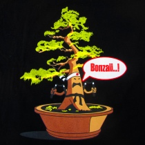 What Many Americans Probably Think of Banzai!