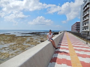 The Recycled Seawall; Still Worth It