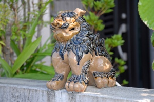 Female Shishi (Shisa) Dog