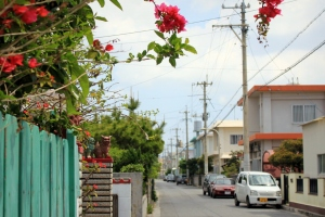 An Idyllic Okinawan Neighborhood Awaits!