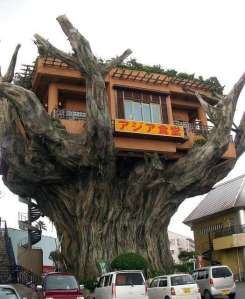 Japanese Tree House