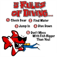 A more simplified list of Dive Rules....