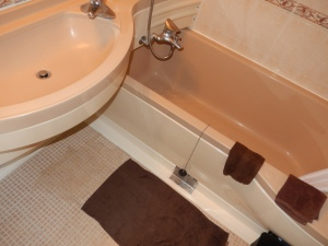 Common floor, tub and sink drain in our waterproof bathrooms.