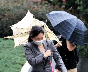 Typhoons are deadly...to Asian umbrellas!