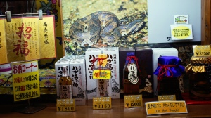 Okinawan Awamori, snake included.