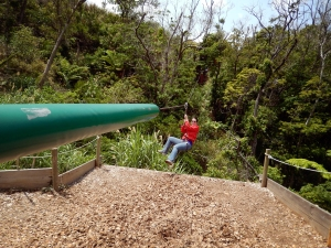 Okinawa Forest Adventure 2014, Jody coming in for a zipline landing!