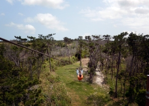 Okinawa Forest Adventure 2014, Kevin away on a zipline!
