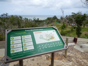 Okinawa Forest Adventure 2014, Onna's forest adventure map