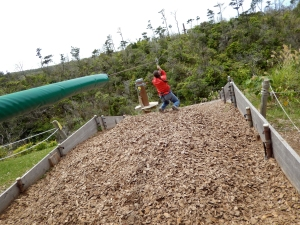 Okinawa Forest Adventure 2014, zipline backwards landing in the wood chips