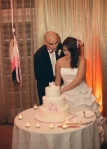 Naomi's Wedding 2014, the couple cutting their cake
