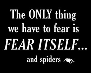 fear itself & spiders