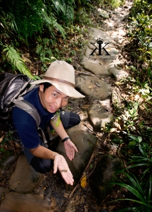 Iriomote Okinawa 2014, Urauchi River, our guide making insect friends on our jungle trek WM