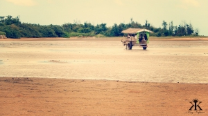 Iriomote Okinawa Vacation 2014, Yubu Island, lonely ox cart crossing WM