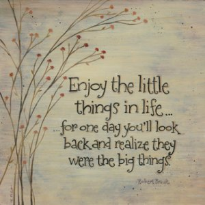 enjoy-the-little-things1