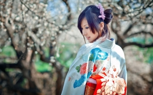 10857-women-japan-cherry-blossoms-dress-sakura-japanese-kimono-asians-0575