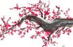 japanese_cherry_blossom__by_ging3r295-d45w2od