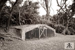 Okinawa Battlesites 2015, Baka Bomb hangars, wooded aircraft shelter 2 WM-1