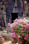 Cambodia 2015, Ta Prohm & Yeay Peau, rustic flowers and gates WM