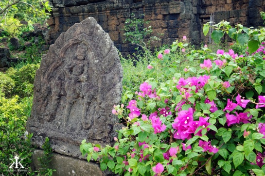 Cambodia 2015, Ta Prohm & Yeay Peau, weather stone and wild flowers WM