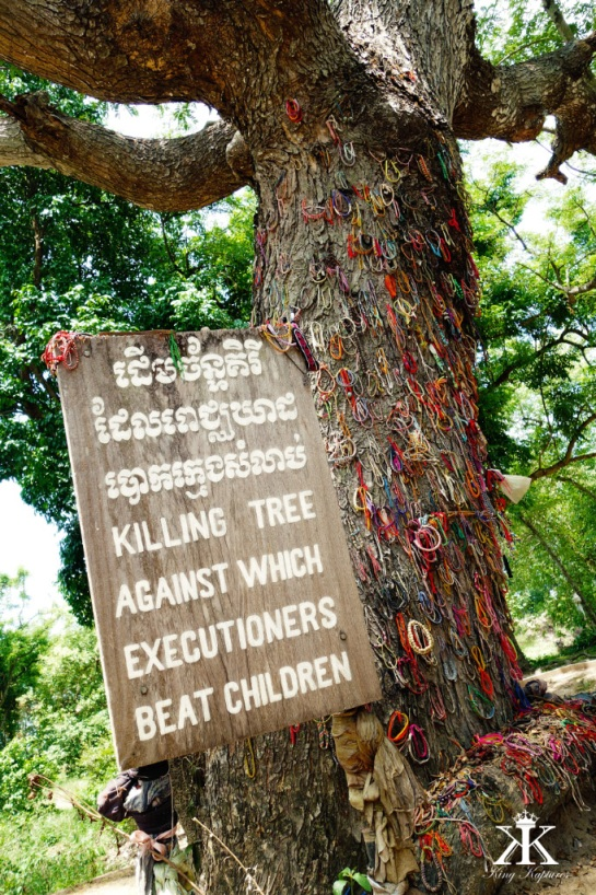 Cambodia 2015, Choeung Ek Genocidal Center (Killing Fields), the killing fields' killing tree WM
