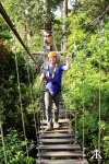 Cambodia 2015, Flight of the Gibbons Zipline, kevin bridged WM