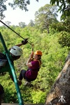 Cambodia 2015, Flight of the Gibbons Zipline, zipping through the jungle 2 WM