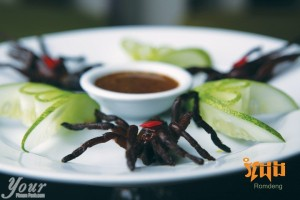 Fried Tarantula at Romdeng