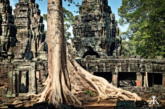 Cambodia 2015, Banteay Kdei, tree root HDR WM