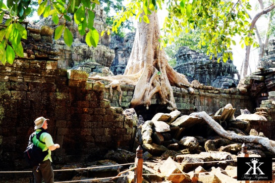 The Majesty of Ta Prohm