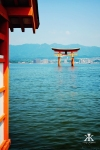 Miyajima 2015, Itsukushima Shrine, floating torii WM