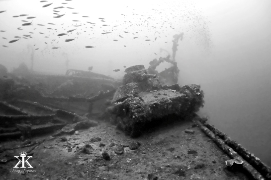 scuba-diving-truk-2016-san-francisco-maru-fish-overflight-of-a-japanese-type-95-ha-go-tank-wm