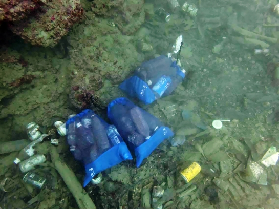 dive-the-blues-scuba-2017-dive-against-debris-bagged-trash