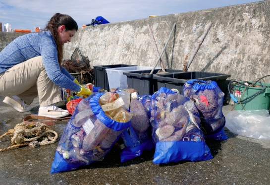 dive-the-blues-scuba-2017-dive-against-debris-sorting-collected-trash