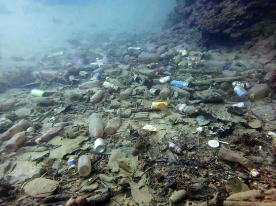 dive-the-blues-scuba-2017-dive-against-debris-trashed-bottom