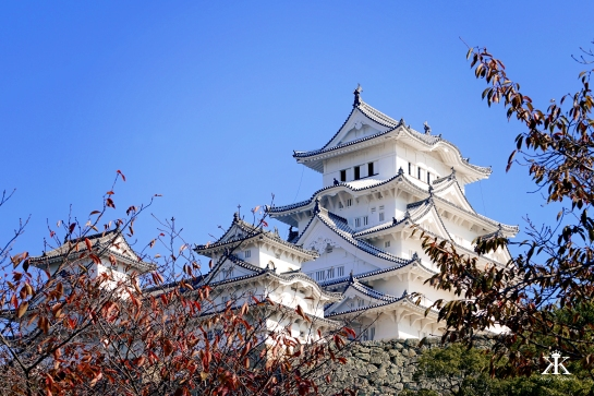 kobe-2016-himeji-jo-castle-white-castle-top-through-the-woods-wm