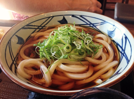 new-years-2017-udon-noodles-for-the-new-year